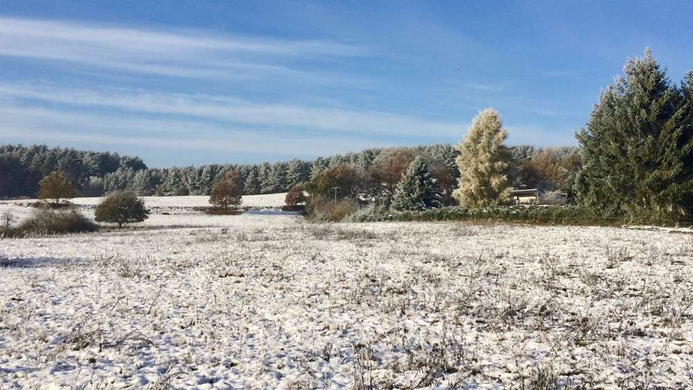 winterspaziergang2016_nov-1000pix_5