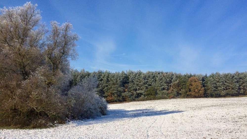 winterspaziergang2016_nov-1000pix_6