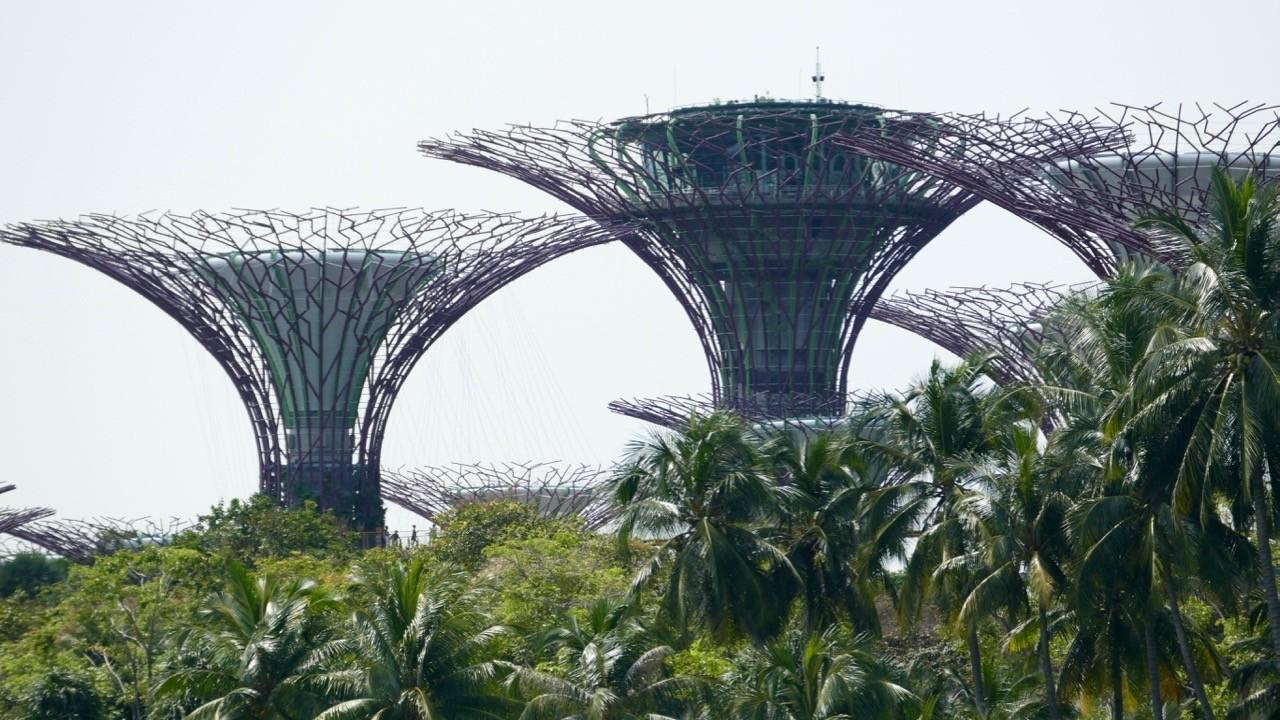 Singapur_6